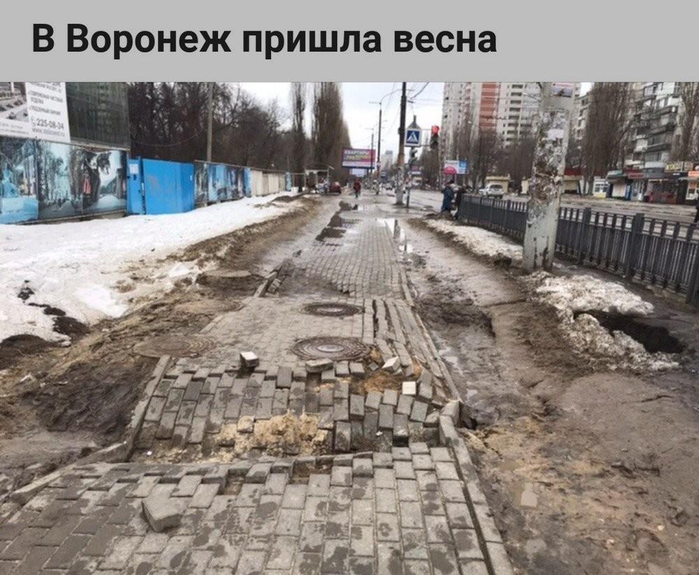 В Воронеж пришла весна